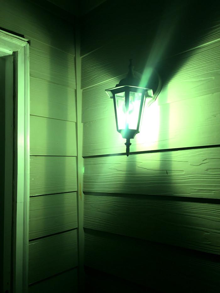 greenlightavet