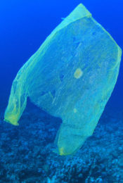 Parley Partners with Fashion Industry to End Plastic Ocean Pollution Thumbnail