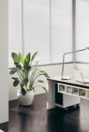 How to Create a Sustainable Home Office Thumbnail