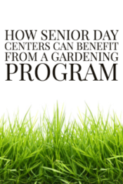 How Senior Day Centers Can Benefit From a Gardening Program Thumbnail